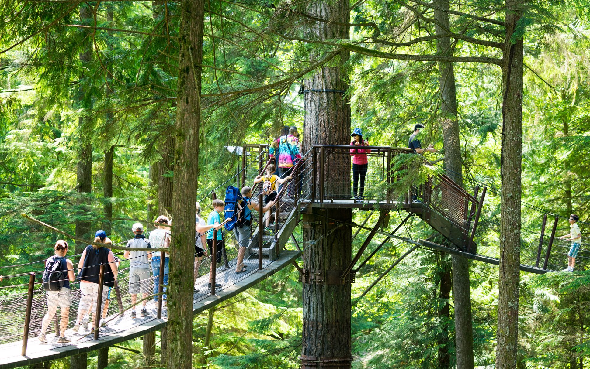 Vancouver Favourites and North Shore Tour